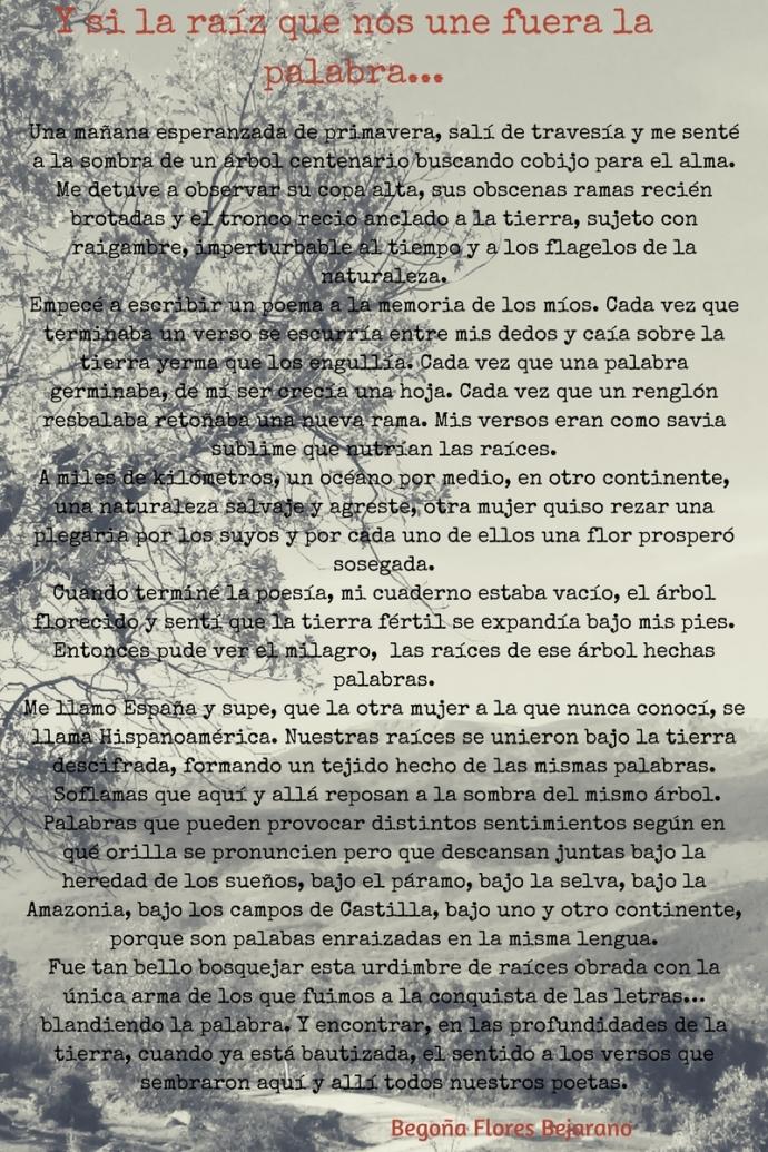 cartel raiz (6)