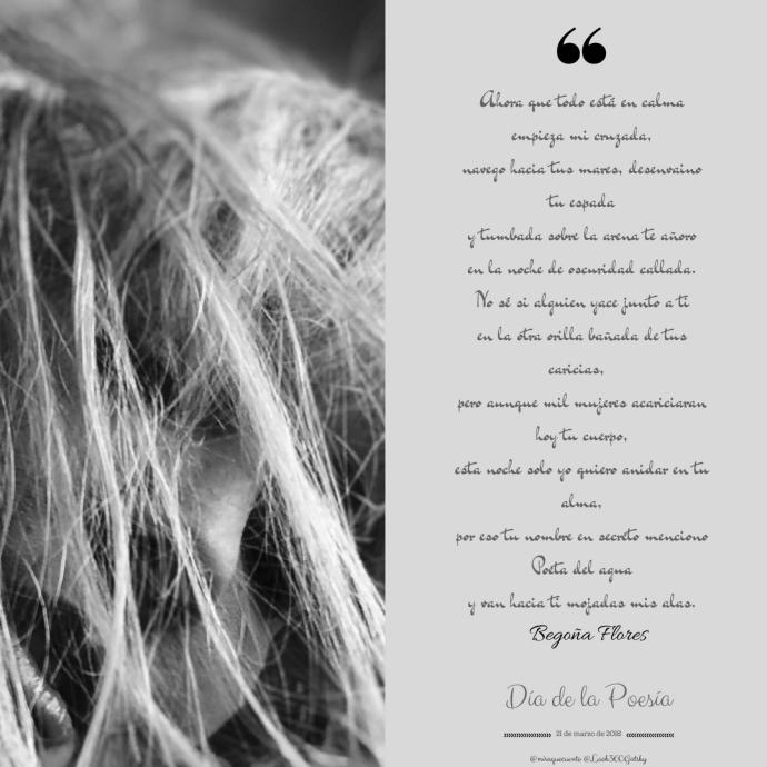 Día de la Poesía.jpg